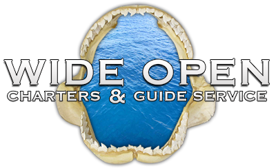 Wide Open Fishing Charters - St. Augustine, Florida